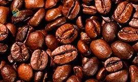 Brasil terá maior produção de café da história