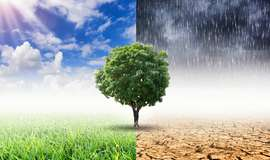 Como as mudanças climáticas podem afetar o agronegócio