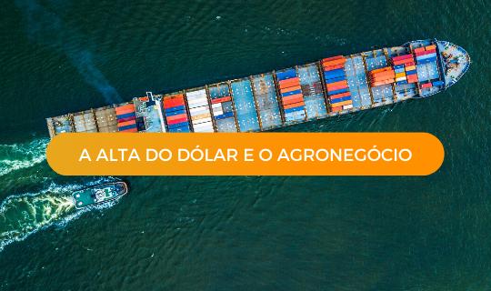 A alta do dólar e o Agronegócio