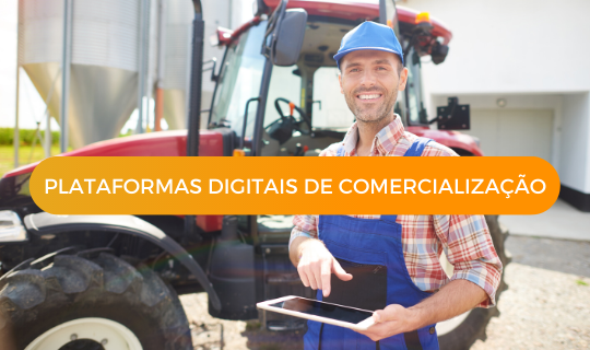 Plataformas Digitais de Comercialização
