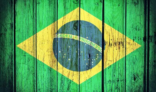 Agronegócio Brasileiro: deu certo, apesar de tudo
