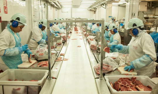 Como a COVID se espalhou em frigoríficos no Brasil?